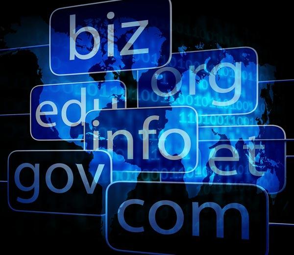 Elección de dominios