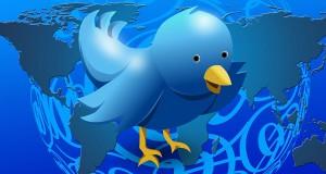 Optimización SEO de la descripción en el perfil de Twitter