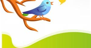 Cambio en la limitación de caracteres de Twitter