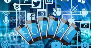 perfiles online